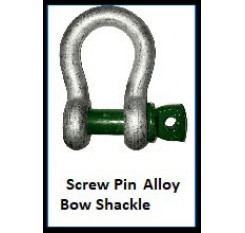 Screw Pin Alloy Bow Shackle