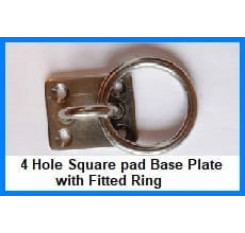 Four Hole Eye Plate With Ring