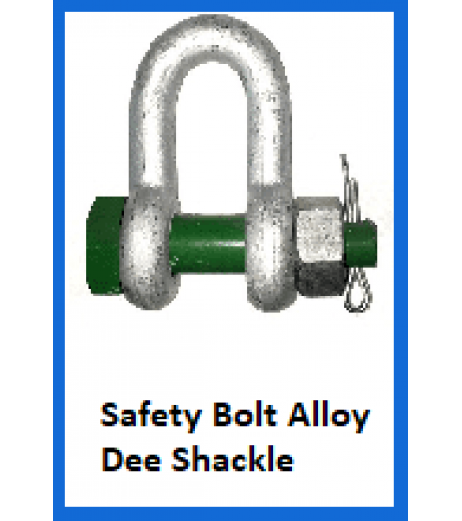 Safety Bolt Alloy Dee Shackle