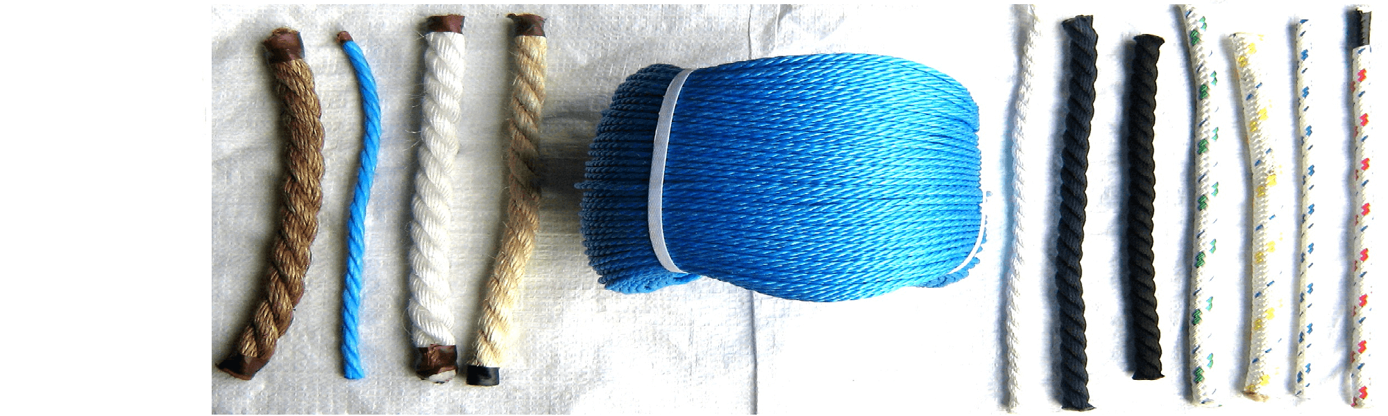 Polyester Rope | Buy Fibre Ropes | Rope Services Direct