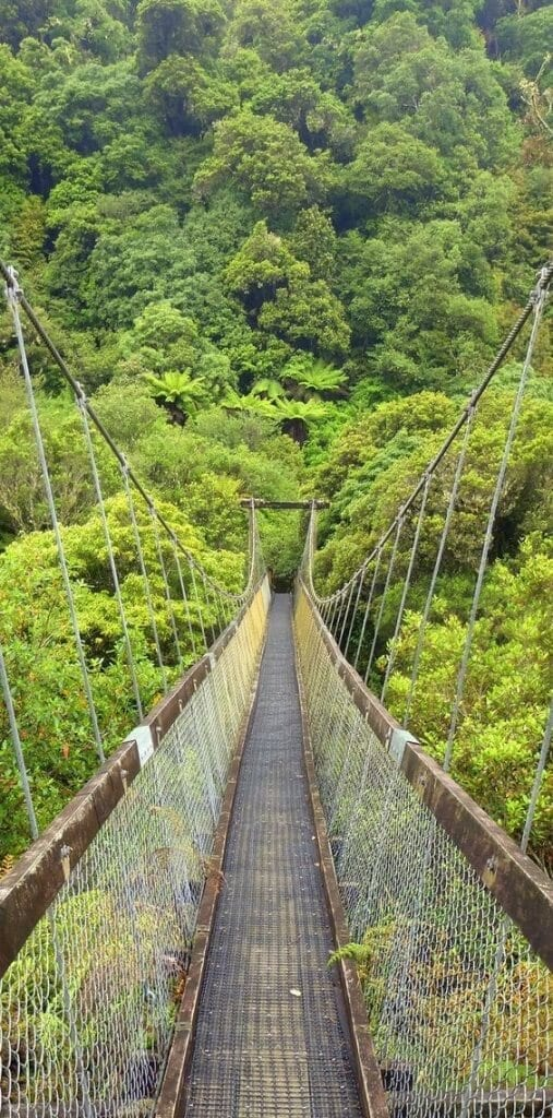 suspension bridges in the construction industry